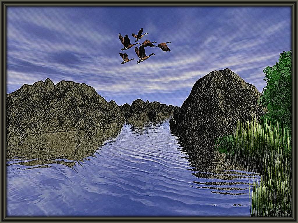 Fly by.jpg
