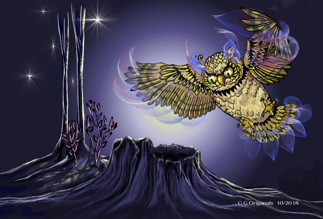 1st owl.jpg