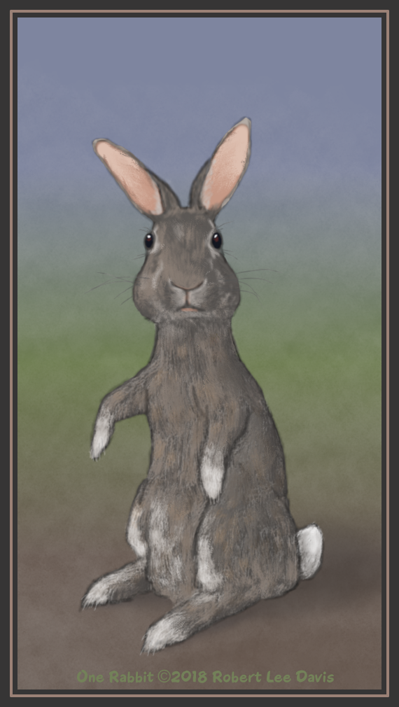 One Rabbit.png