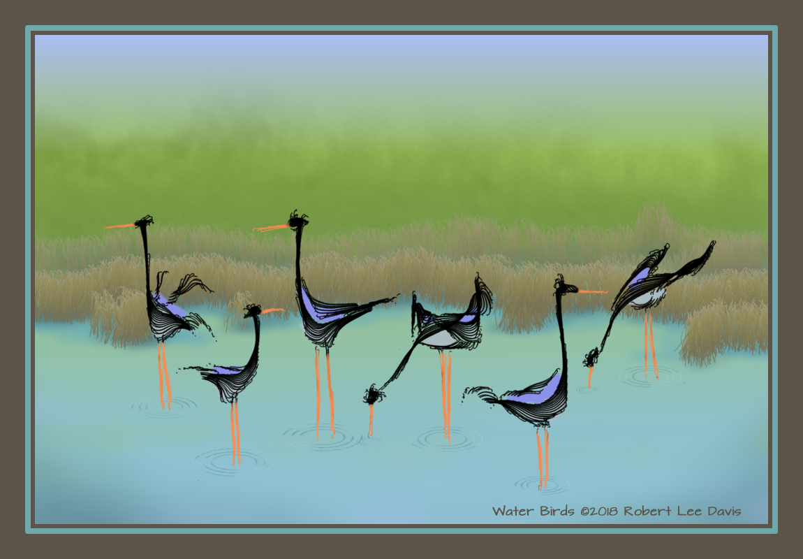 Water Birds.png
