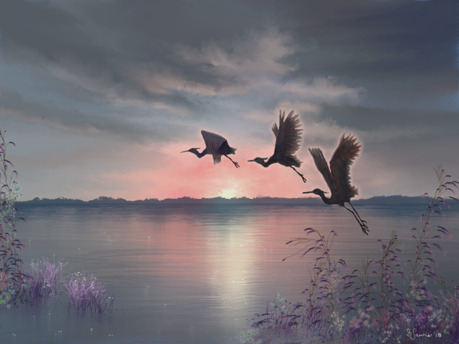 Herons2018sml.png