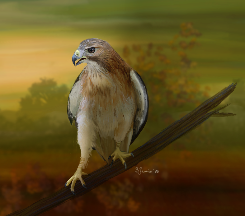 birdofprey_by_sillybilly60-sml2018.png