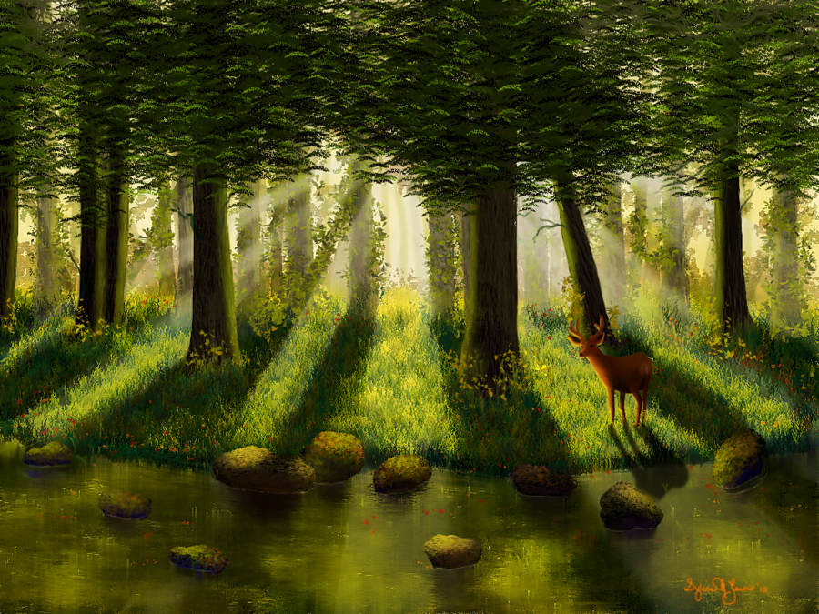 forest_light_by_sillybilly60-sml2015.png