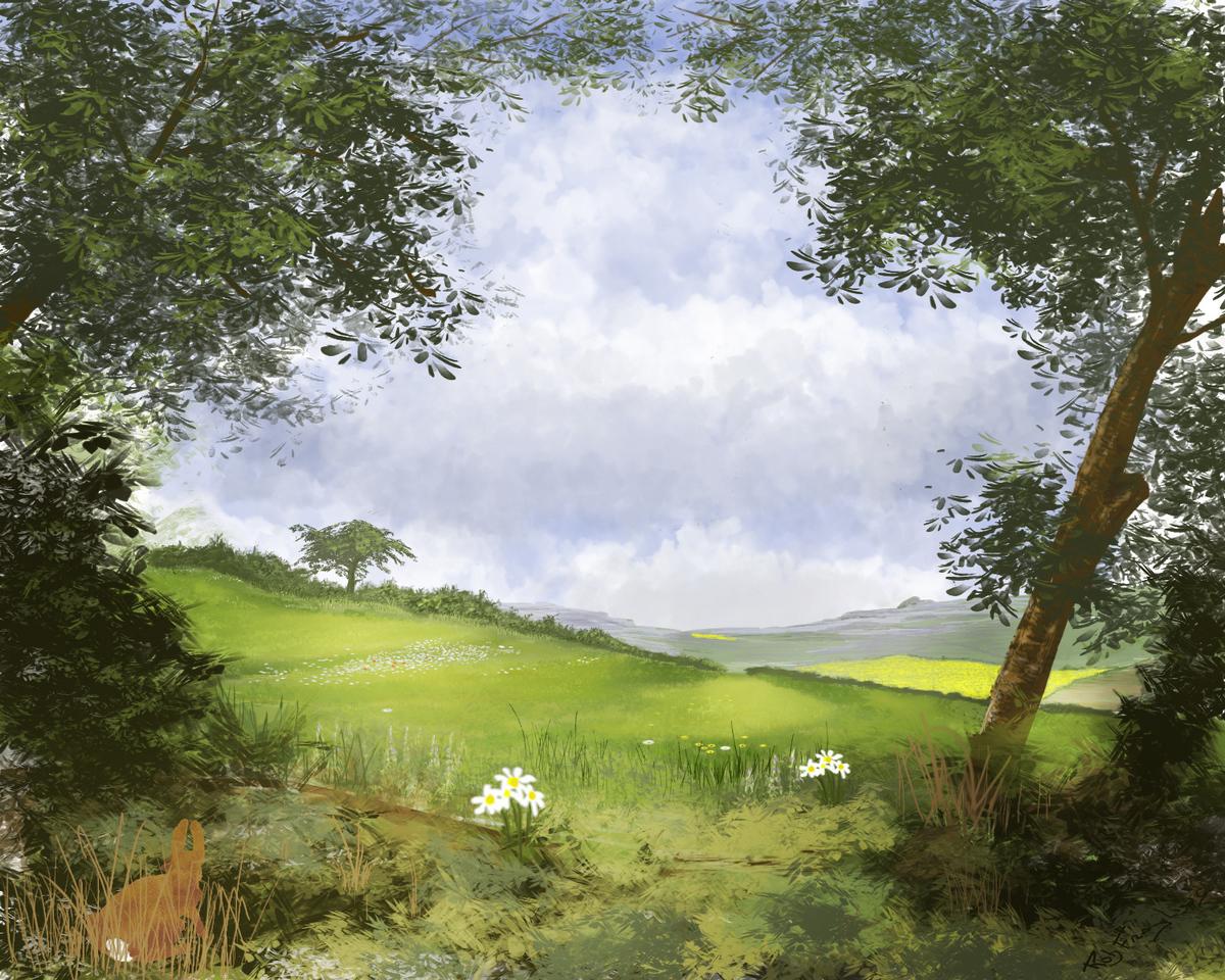 field with rabbit 2.jpg