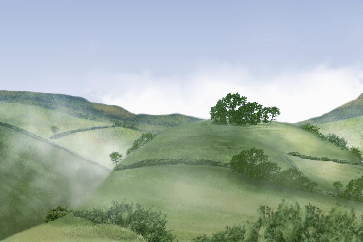 a hill 2.jpg
