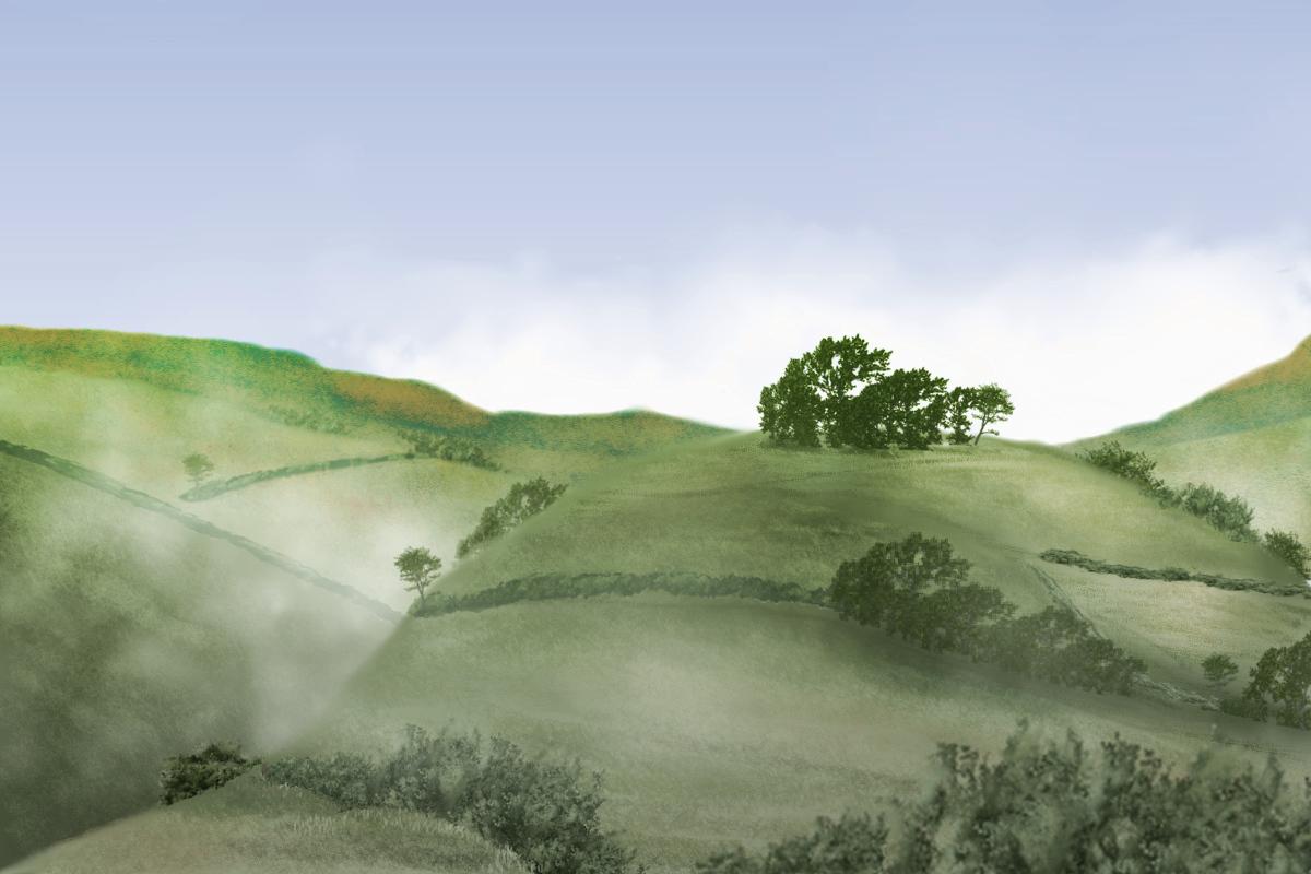 a hill 3.jpg