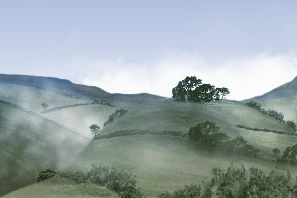 a hill 4.jpg