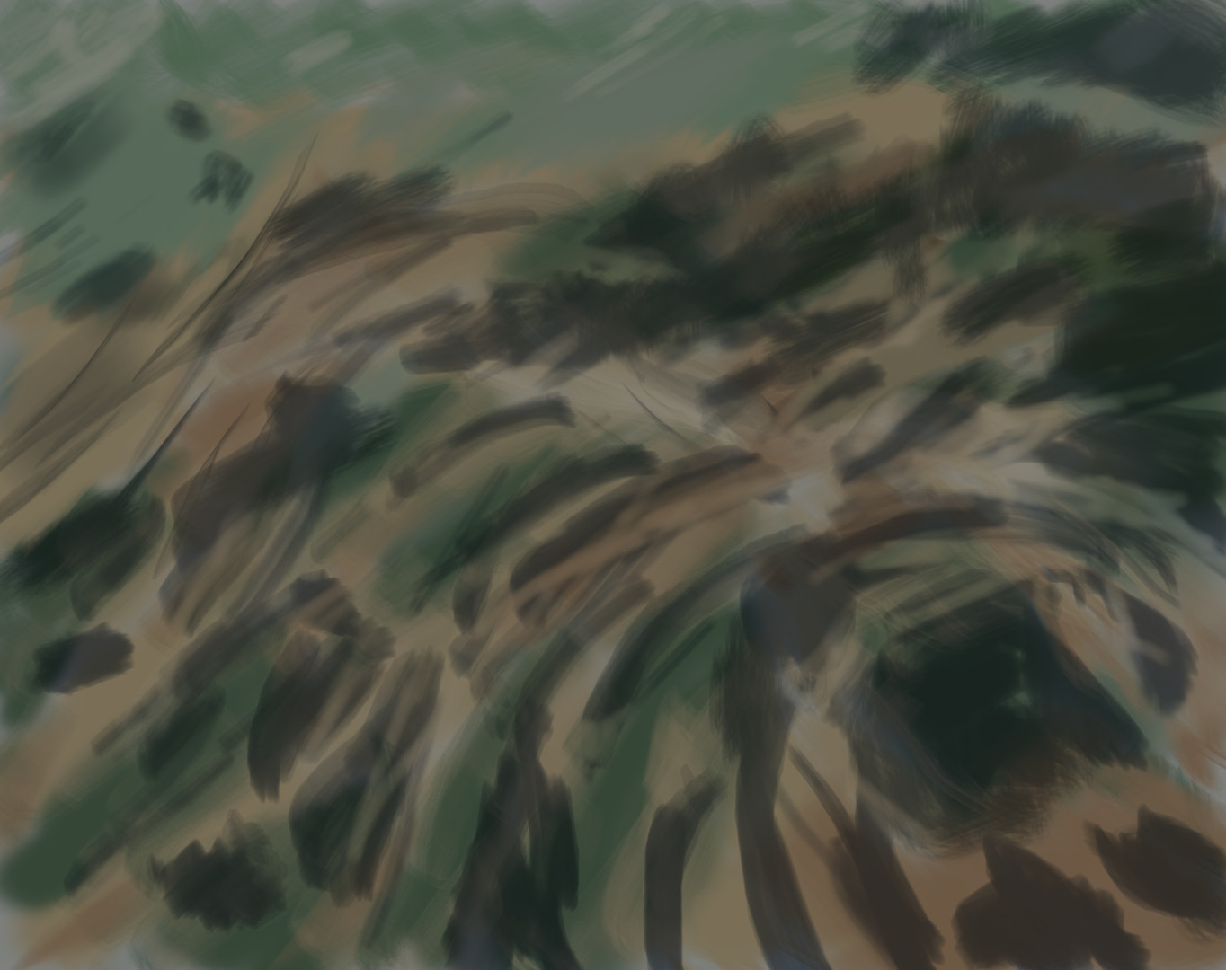 grass 3b.jpg