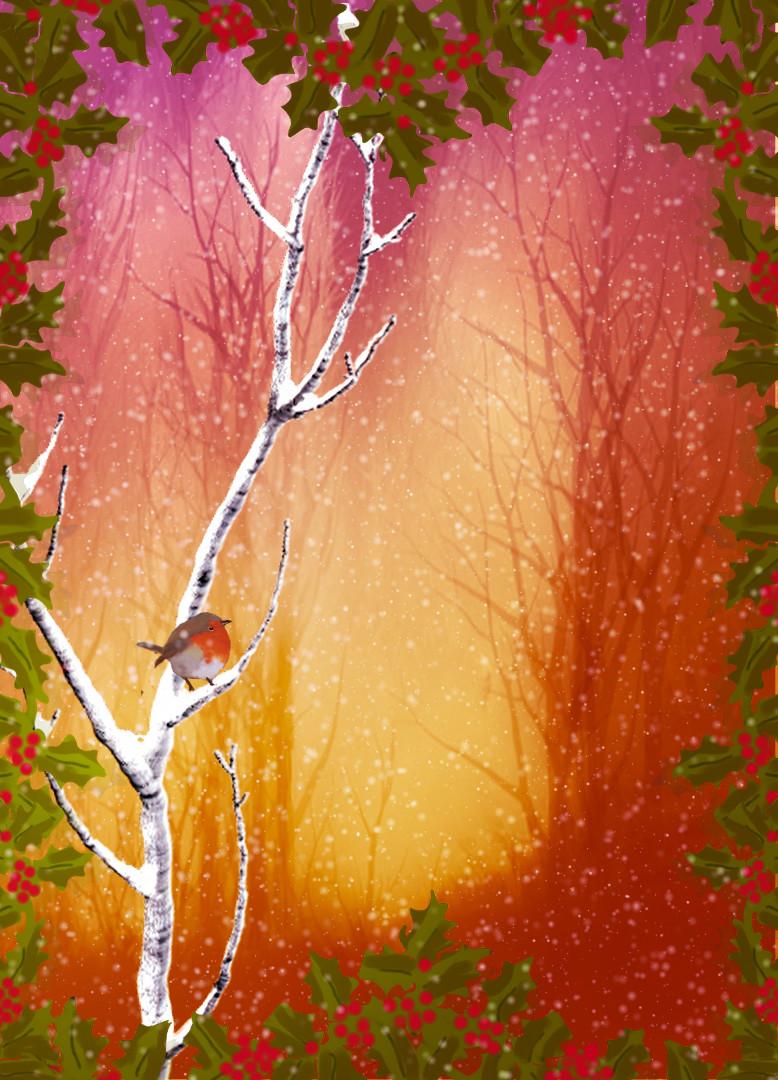 robin in the snow1.jpg