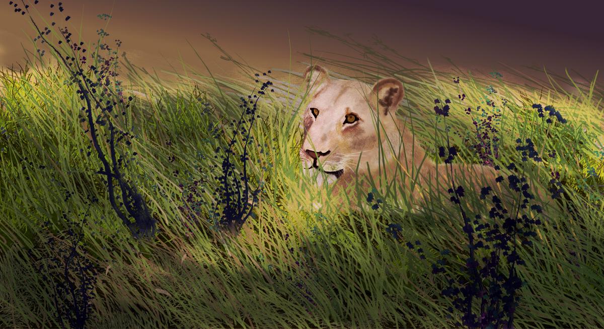 lion small2.jpg