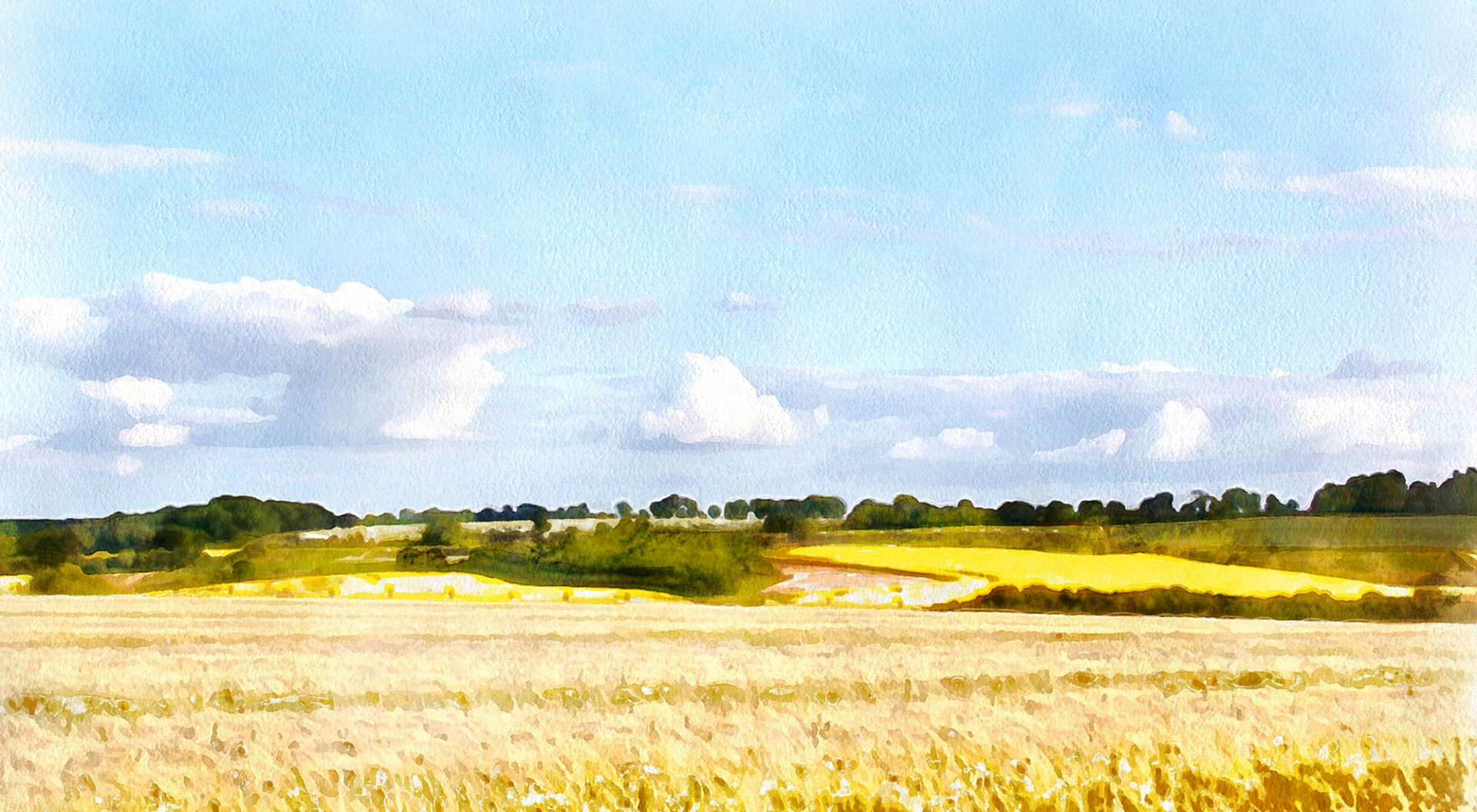 landscape1a.jpg