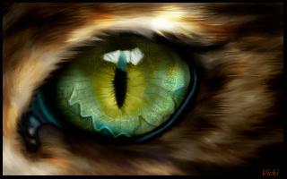 eye practice.jpg