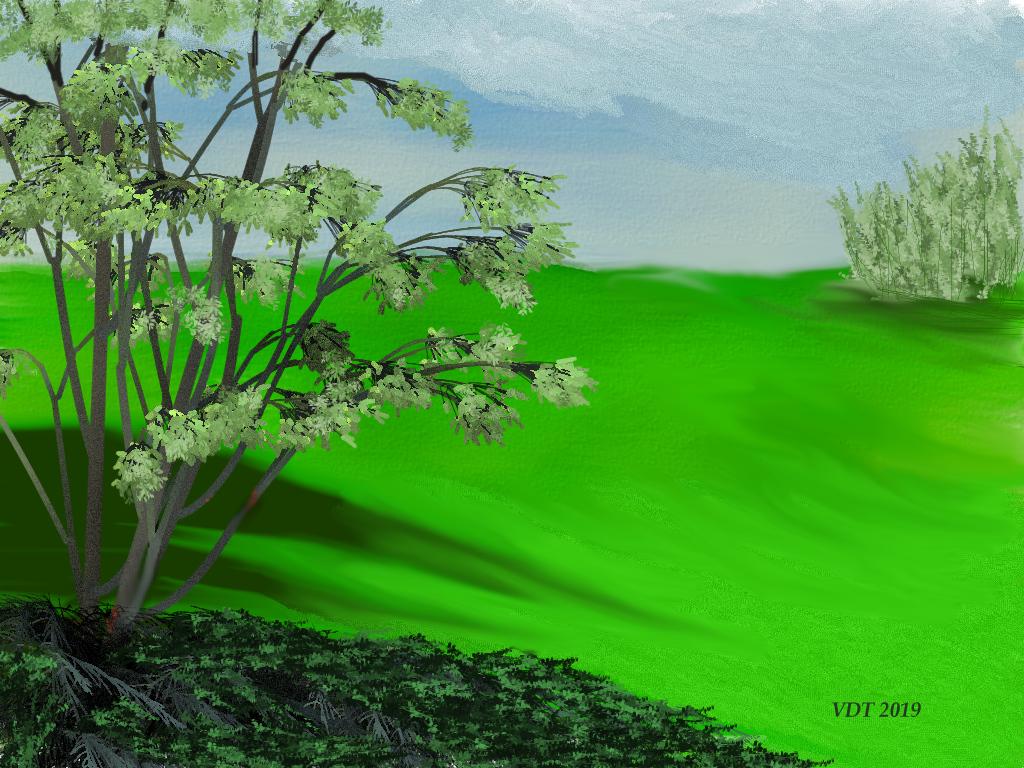 A Simple landscape.jpg