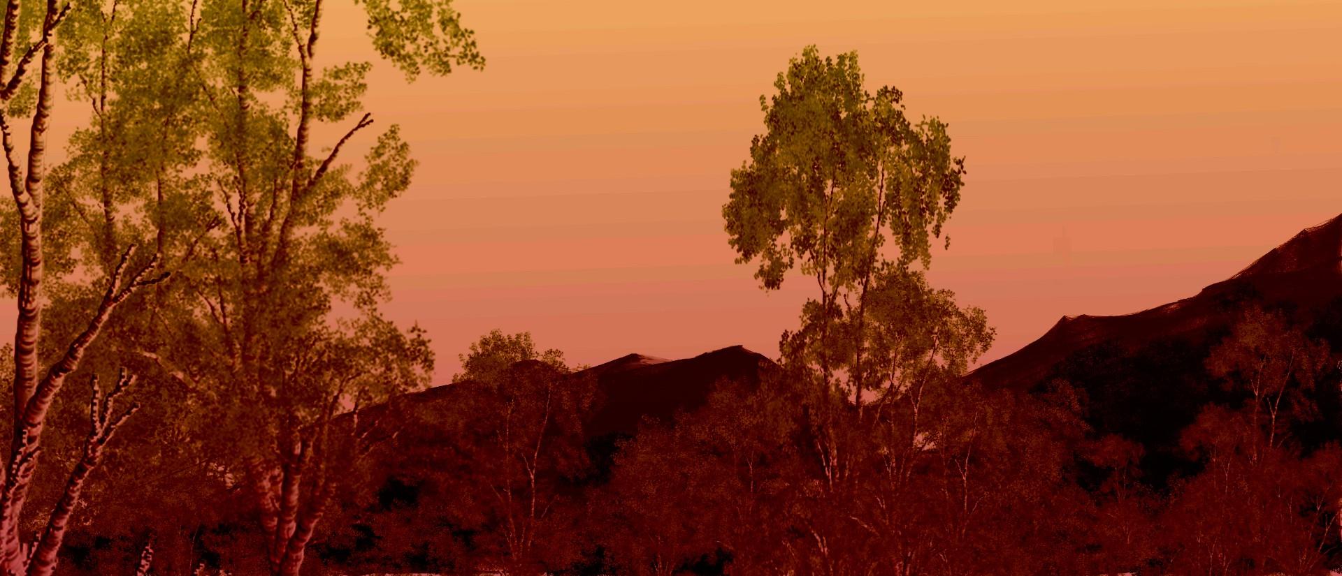 pink wood 1.jpg