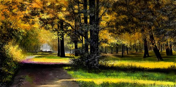 Forest-sunlit-600.jpg