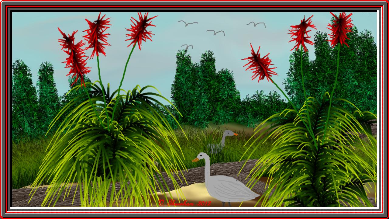 Wetlands 3.jpg