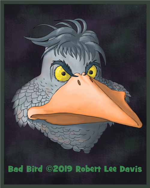 Bad Bird-11.png