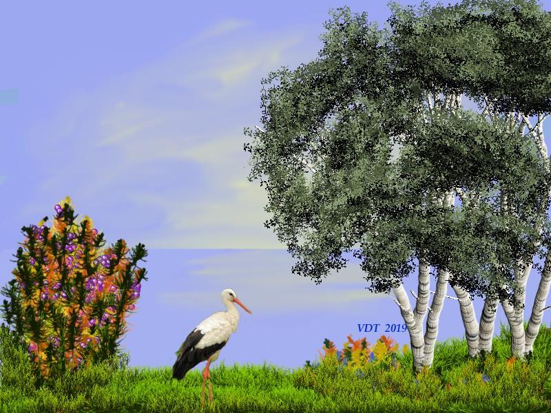 Mr Stork.jpg