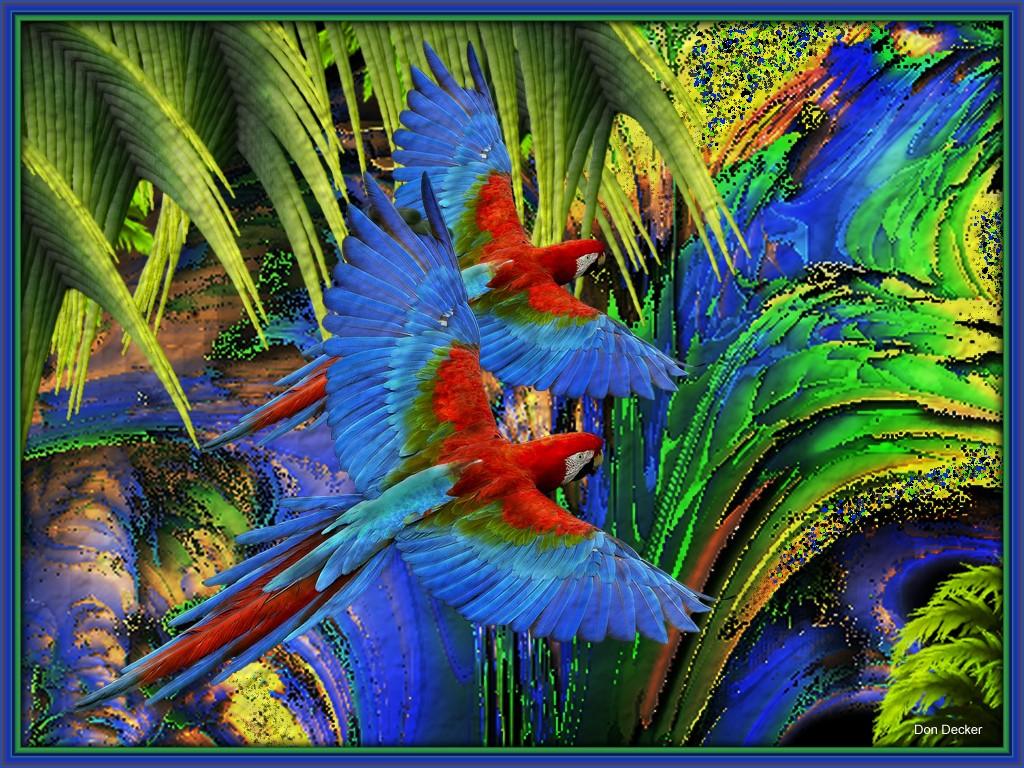 Parrot &  Parrot.jpg