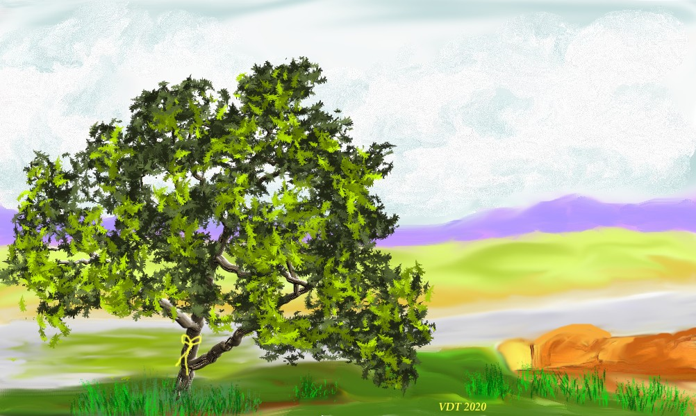 Tie a yellow ribbon around the old oak tree.jpg