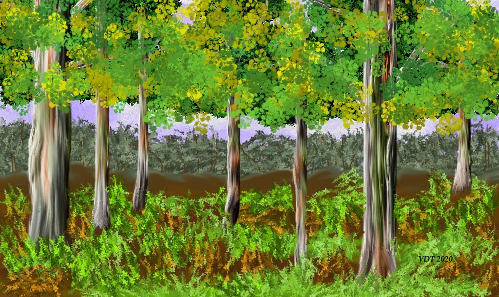 Colourful Trees.jpg