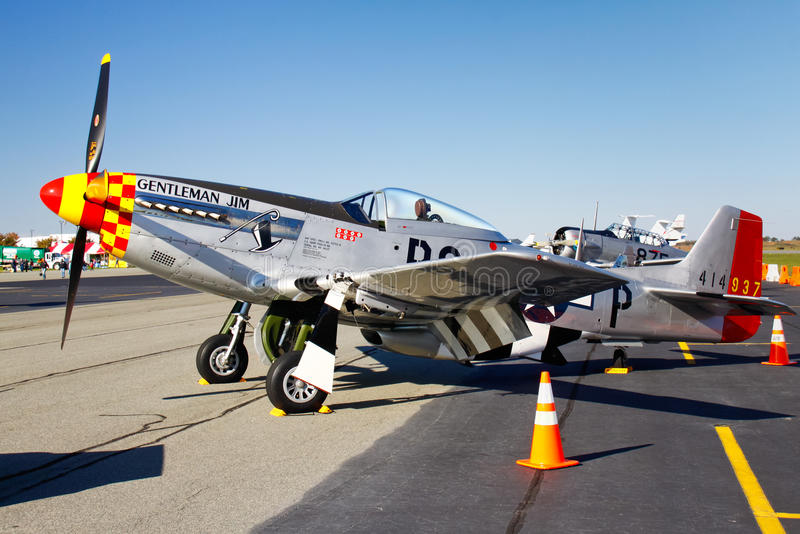 p-51d-mustang-fighter-plane-display-21883475.jpg