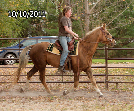 Name: dakota-trot-oct10-404-copy.jpg, Views: 3250, Size: 159.85 KB