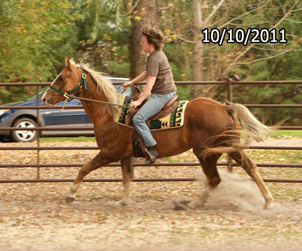 Name: dakota-canter-oct10-384-copy.jpg, Views: 3241, Size: 148.33 KB