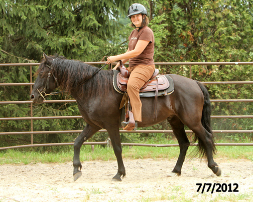 Name: apache-ann-ride-july7-120-FORUM.jpg, Views: 827, Size: 264.78 KB