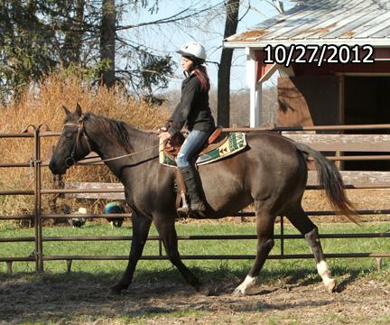Name: elsie-ride2-oct27-329-FORUM.jpg, Views: 1828, Size: 147.40 KB