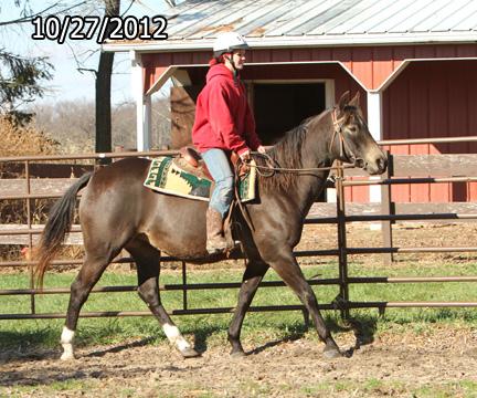 Name: elsie-ride1-oct27-313-FORUM.jpg, Views: 1818, Size: 147.83 KB