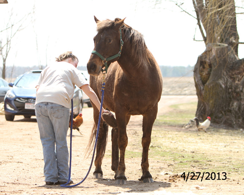 Name: LAKOTA-GROOM-APRIL27-544-WEBREADY.jpg, Views: 1157, Size: 186.06 KB