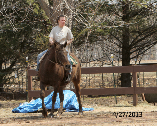 Name: LAKOTA-RIDE-TARP-APRIL27-575-WEBREADY.jpg, Views: 1125, Size: 272.62 KB