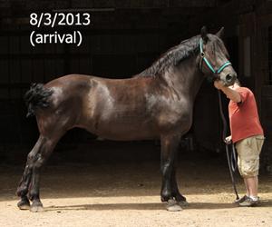 Name: FRANNIE1-AUGUST3.jpg, Views: 1087, Size: 62.80 KB