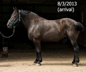 Name: FRANNIE2-AUGUST3.jpg, Views: 1077, Size: 60.82 KB