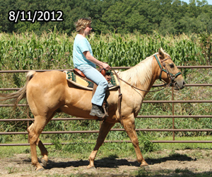 Name: JACOBY-RIDE-august11.jpg, Views: 1383, Size: 117.82 KB