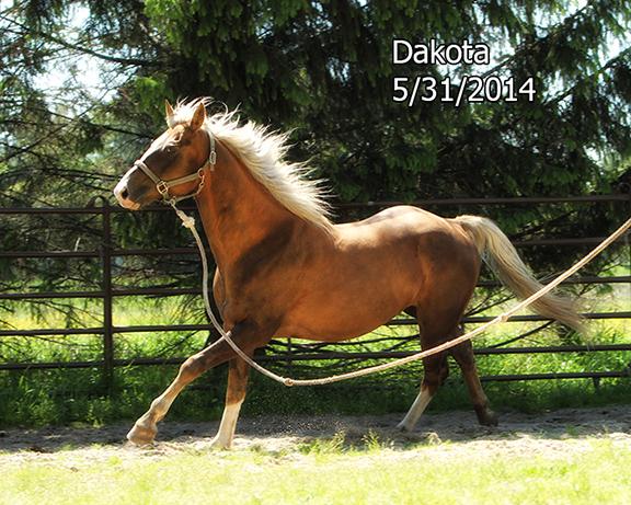 Name: 1VOL-DAKOTA-MAY31-1047-copy.jpg, Views: 4474, Size: 277.33 KB