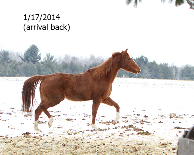 Name: breezy-jan17-IMG_3638-copy.jpg, Views: 1423, Size: 236.12 KB