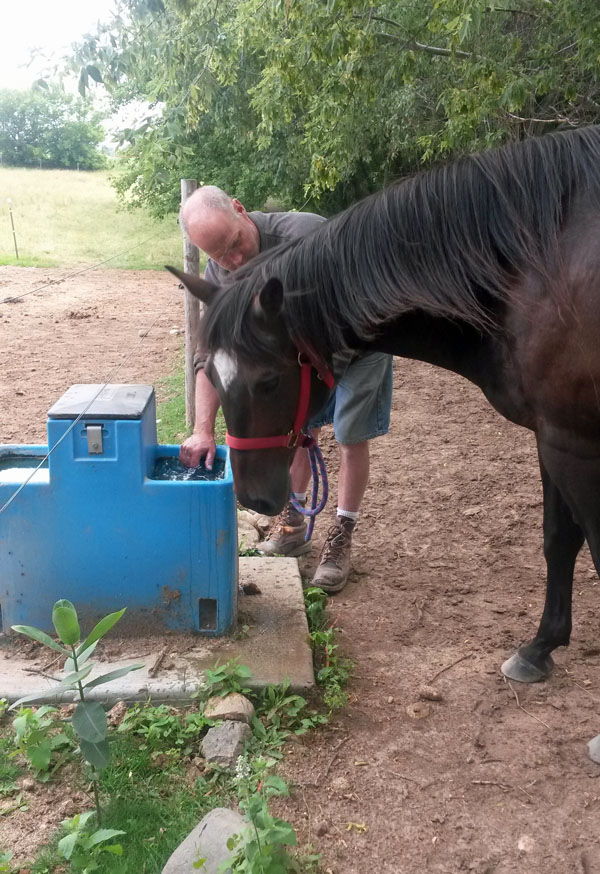 Name: showing_Annie_automatic_waterer.jpg, Views: 494, Size: 184.84 KB