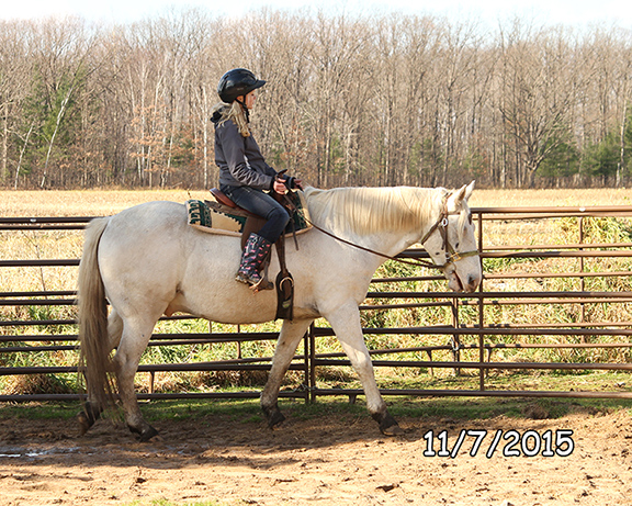 Name: oreo-ride-emily-nov7-IMG_8320-copy.jpg, Views: 1037, Size: 299.08 KB