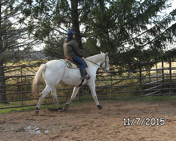 Name: oreo-trot-nov7-IMG_8348-copy.jpg, Views: 1016, Size: 284.80 KB
