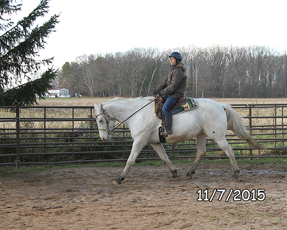 Name: oreo-trot-nov7-IMG_8378-copy.jpg, Views: 1004, Size: 209.14 KB