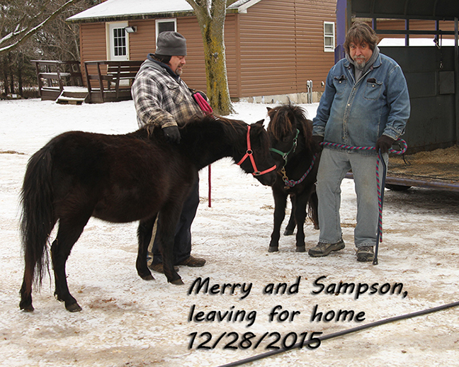 Name: merry-and-sampson-going-home-dec28-IMG_0425-copy.jpg, Views: 312, Size: 375.79 KB