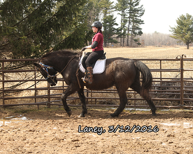 Name: laney-ride1-march12-IMG_5492-copy.jpg, Views: 639, Size: 386.26 KB