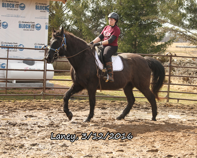 Name: laney-ride2-march12-IMG_5517-copy.jpg, Views: 628, Size: 346.25 KB