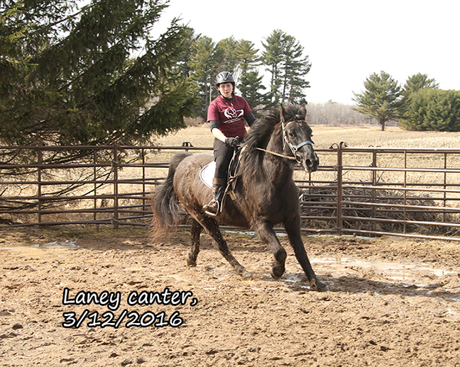 Name: laney-ride3-march12-IMG_5576-copy.jpg, Views: 639, Size: 375.10 KB