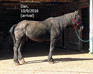 Name: dan1-oct9.jpg, Views: 662, Size: 87.32 KB