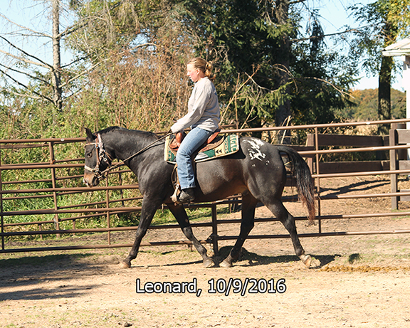 Name: leonard-ride1-oct9-IMG_3833-copy.jpg, Views: 798, Size: 421.51 KB