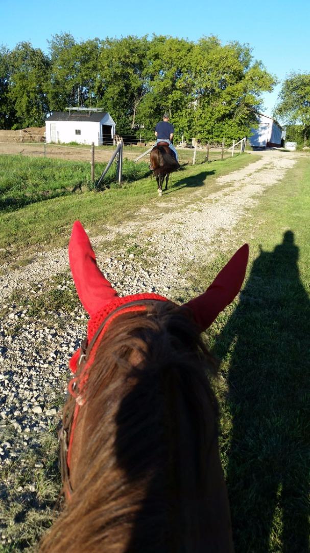 Name: Annie_trail_ride_5.jpg, Views: 355, Size: 266.43 KB