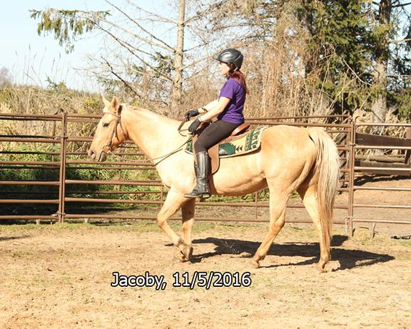 Name: jacoby-ride1-nov5-IMG_4766-copy.jpg, Views: 632, Size: 381.94 KB